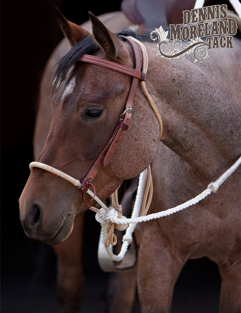 HV21-Single-Rope-Hackamore-with-Rawhide-Nose-3-16-16