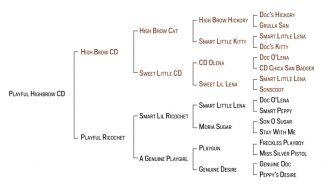 IntheBlood Playful-Highbrow-CD-pedigree