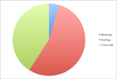IntheMoney Age-Chart