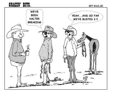 IntheFunnies KO200303---Busted-3