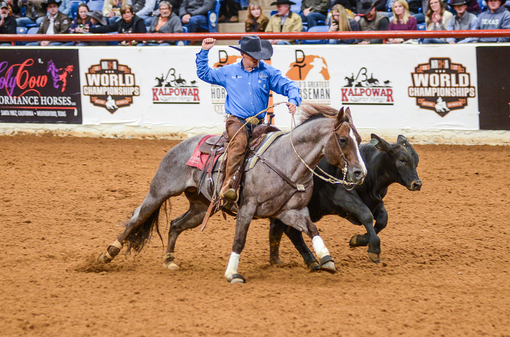In The Blood Hickory Holly Time Quarter Horse News