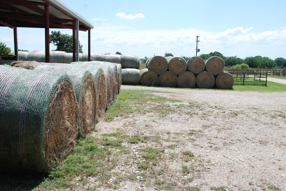 Texas Agriculture: Industry Evaluates Hurricane Harvey ... |Texas Agriculture
