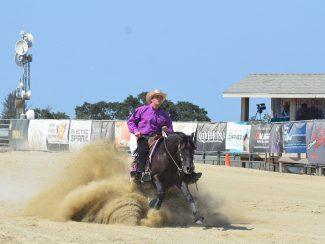 reining