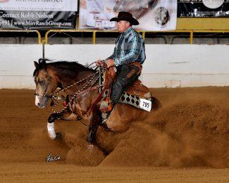 shane brown reining