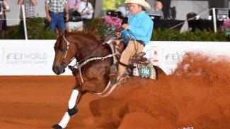 Ms Dreamy reining