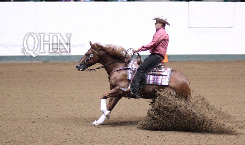 horse sliding in dirt