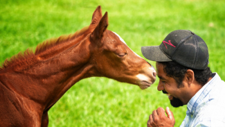 Cattalou colt kissing Chico