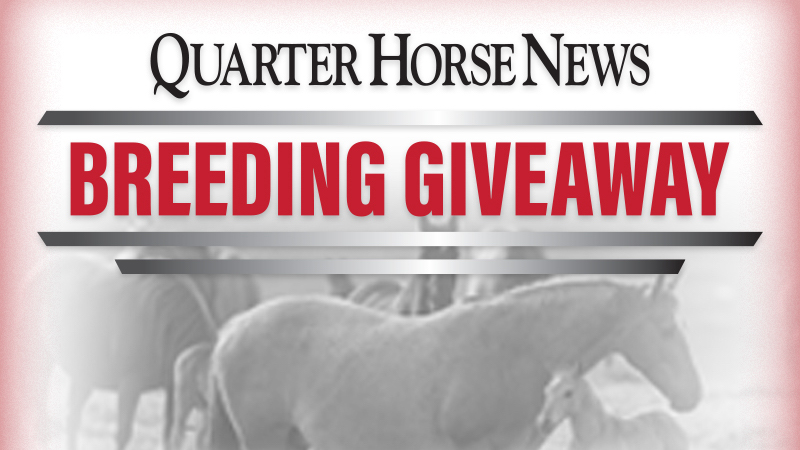 Quarter Horse News Stallion Register Breeding Giveaway
