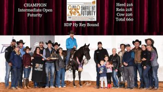 Hy Rey Bound intermediate champion award