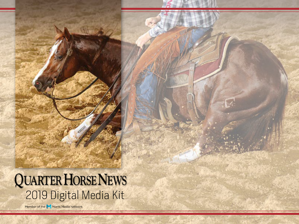 QHN Digital Media Kit 2019 Cover