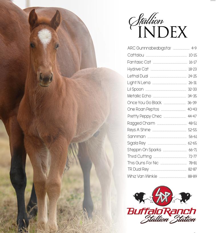 2018 SDP Buffalo Ranch Stallion Roster