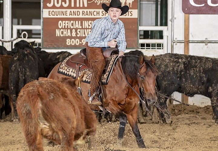 Boy riding a horse