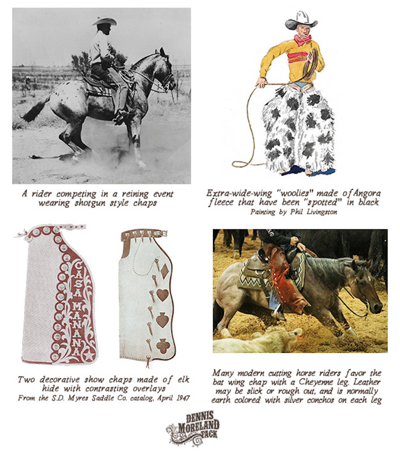 full chaps throughout history illustation