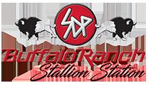 SDP Buffalo Ranch logo