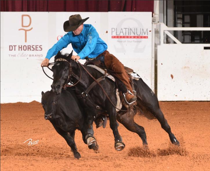 Clay Volmer riding stallion Hy Rey Bound
