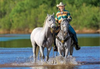 Man riding a horse in the river