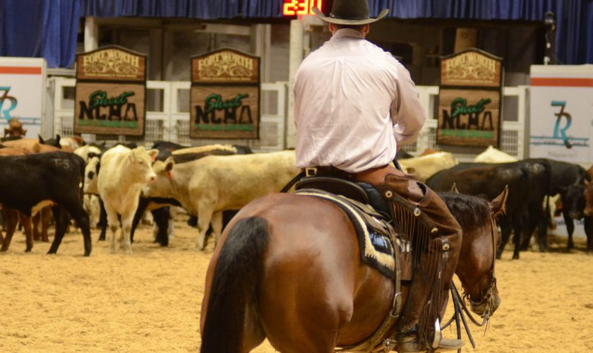 More Major NCHA Events Trying Leveling This Year - Quarter