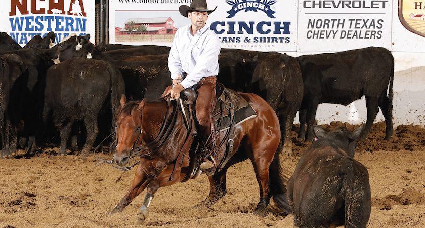 western national championships kenny platt rider moms stylish pepto horse