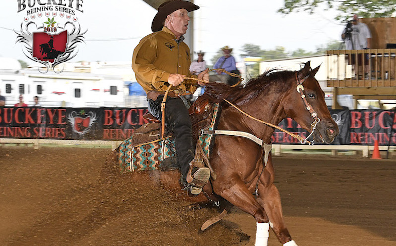 Spookgotgunsintown, with Dean Brown aboard, shows at the Buckeye Reining Series in August 2019.