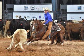 Riley Farris riding Pay Purr View at the AQHYA in Oklahoma City.