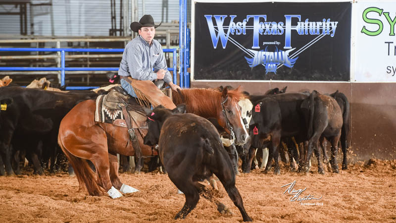 West Texas Futurity Non-Pro Champion Tweezin My Brow