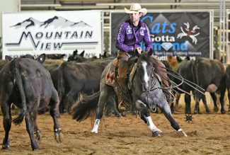 Adan Banuelos astride Armani Blue at the Idaho Futurity.