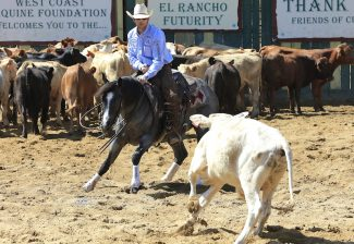 Adan Banuelos and Armani Blue at the El Rancho Futurity.