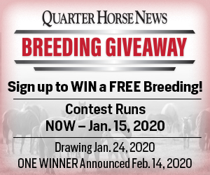 QHN Stallion Register Breeding giveaway