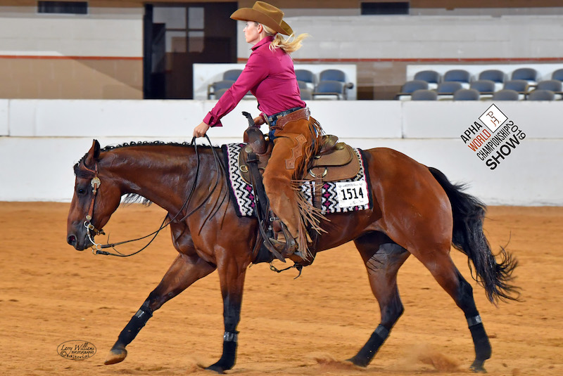 Chelsea Schneider on Chic Out My Guns at the APHA World Show in 2019.