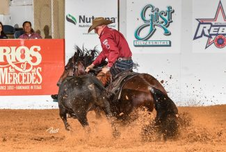 corey cushing showing at the snaffle bit futurity