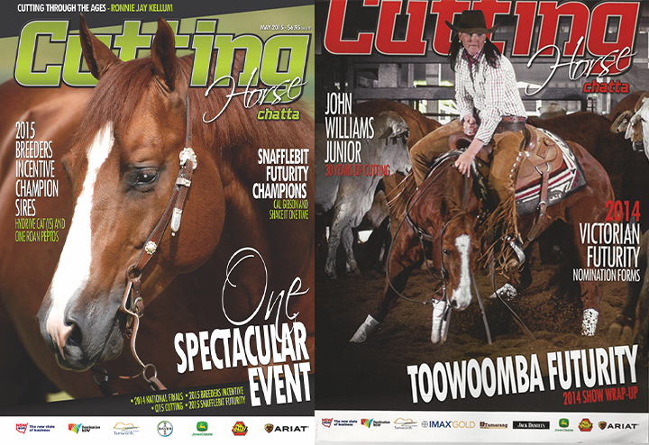Cutting Horse Chatta covers