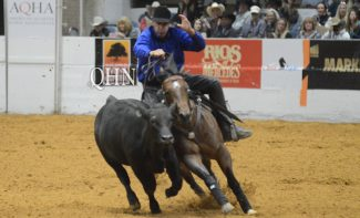 Lance Johnston and Here Comes The Boon in cow work at the Snaffle Bit Futurity.