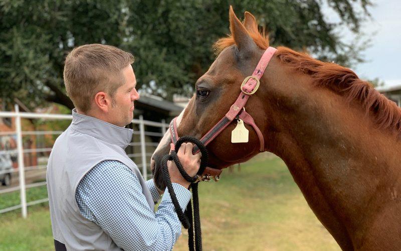 Shane Plummer holding stallion Hydrive Cat