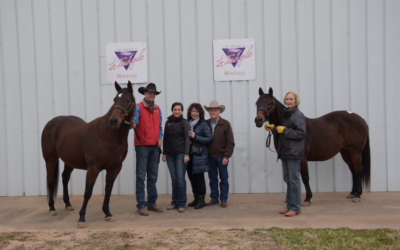 The top sellers at the 2019 Triangle Horse Sales January sale.