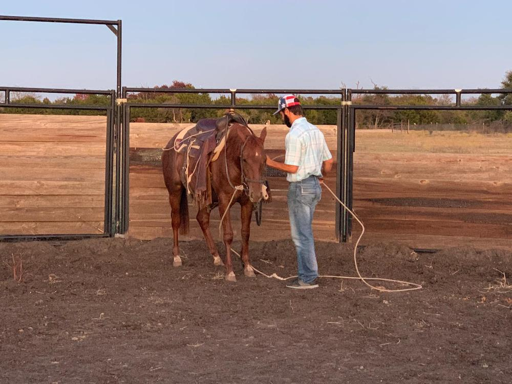 Frank Sigala using a rope to desensitize filly