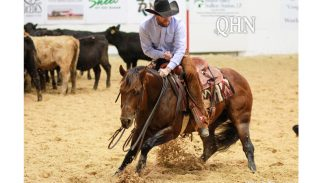 NCHA World Finals Awards winners PG Heavily Armed and James Payne