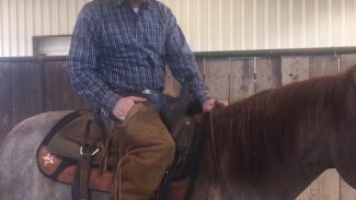 demonstrating how to shorten and lengthen your reins