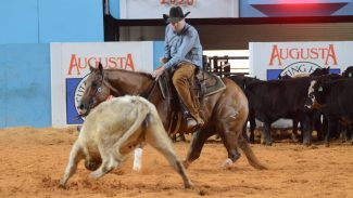 Augusta Futurity Champions CR Tuff Catty Trey