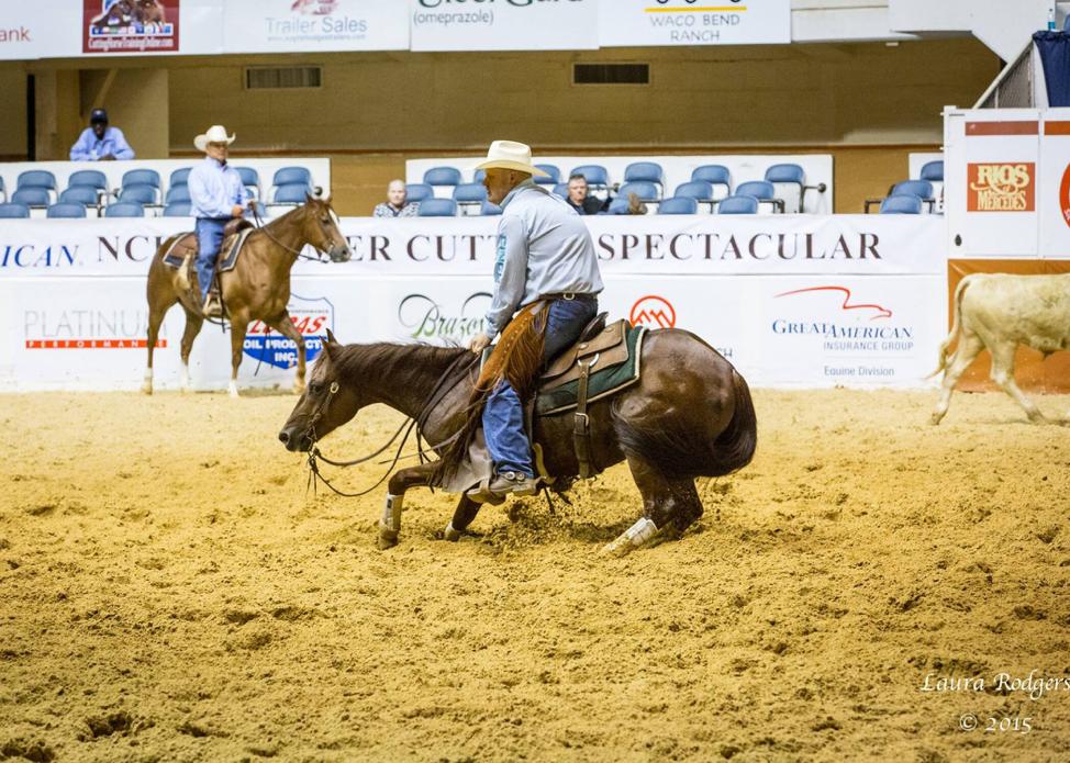 Austin Shepard riding horse Some Kind Highbrow