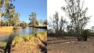 australia drought creek before and after