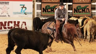 NCHA Super Stakes Champion Hiss N Vinegar
