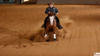 Florida Reining Classic champion Pale Faced Whiz