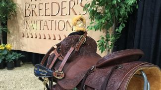 breeders invitational sign
