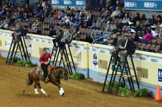 reining-judges
