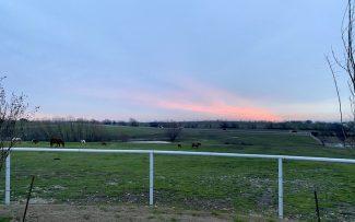 sunset at SDP Buffalo Ranch