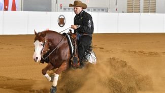 Congress Reining Champion Hollys Hijacker