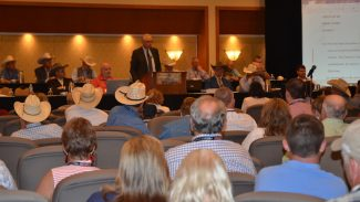 NCHA Convention