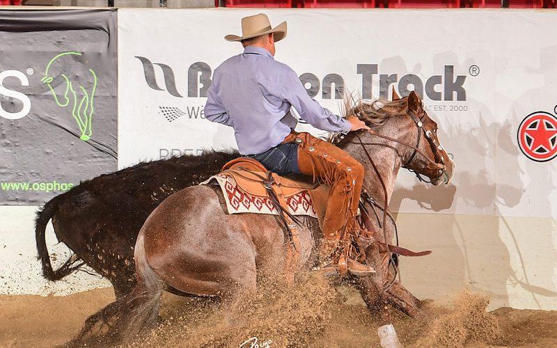 NRCHA-Stallion-Stakes-Mc-Cowhammer