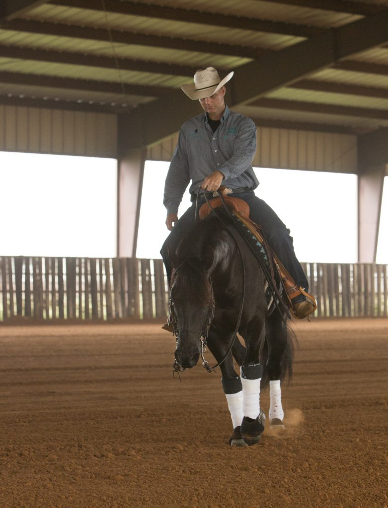 Whether warming up or putting in a downtime workout, Vanlandingham sticks to repetitious fundamental work, such as neck reining and guiding.