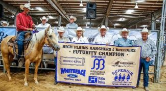 HPRBA-ranch-horse-futurity-open-champion-little-run-shinning
